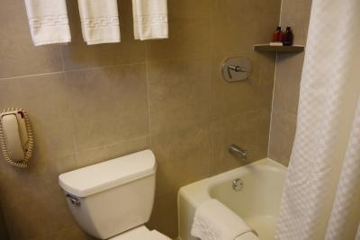固定式シャワーのバスタブと並んでトイレがあります
