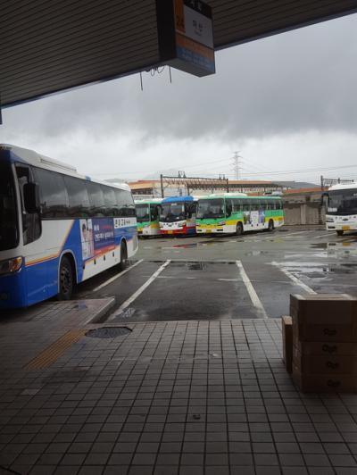 ノポ・バスターミナル直結の便利な駅