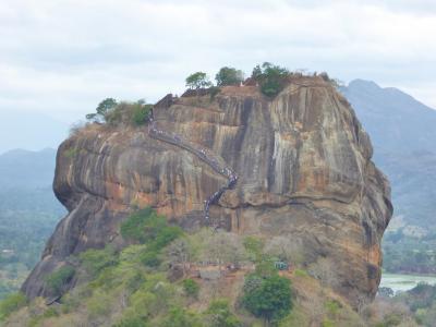 森の中から突き出たシギリヤロックの姿を頂上から眺めることができます。