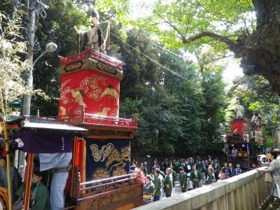 赤坂氷川祭・神幸祭の江戸型山車巡行の地味な面白さ