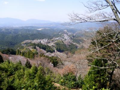 ここからの吉野の眺めは素晴らしい 蔵王堂まで桜並木 そばの坂からの眺めもいい