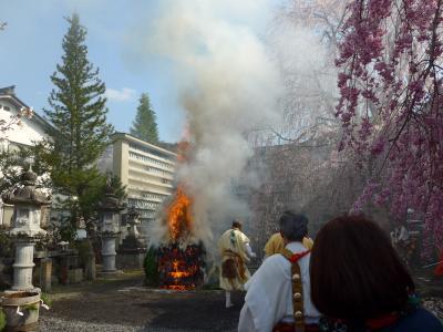 修験道の総本山 釈迦如来像や役行者倚像もすばらしい.花祭りに行くと大護摩法要・火渡りがある.