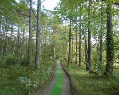 戸隠森林植物園