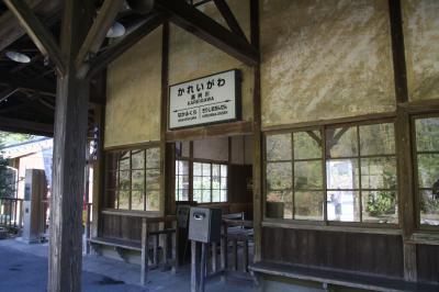 木造駅舎と猫