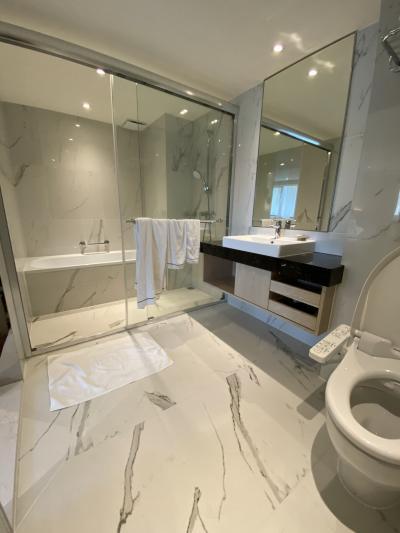 バスルーム全体像。かなりゆったりな作り。広くて気持ちいい。