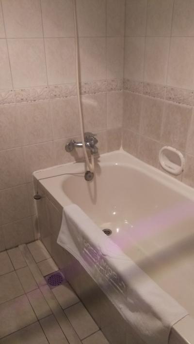 浴槽は浅めですが、長さは使えます