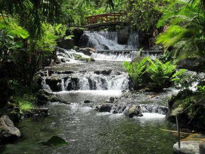 自然の川の温泉