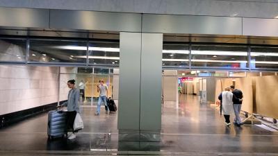 ヴヌコヴォ国際空港駅