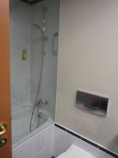 ハンドシャワーのあるバスタブでした