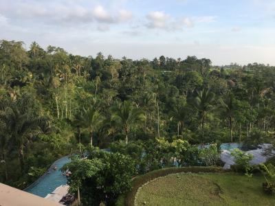 緑豊かで過ごしやすいホテル