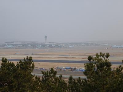 仁川空港を発着する飛行機が良く見えます