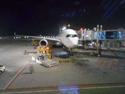 まるで、日本の航空会社
