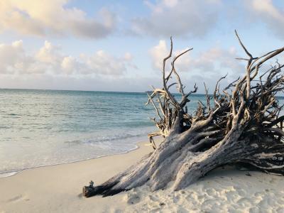 ガラパンビーチ
