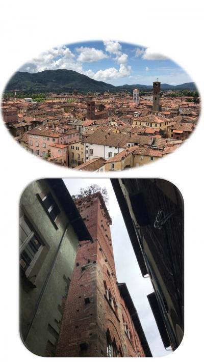屋上からの旧市街地の眺めをぜひ・・素敵でした