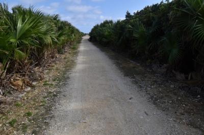 島の北端に向かう一直線の道が気持ちよかった