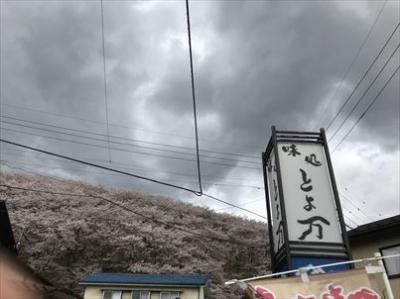 桜で有名の弘法山の近くにあり、穴場のレストランでした。