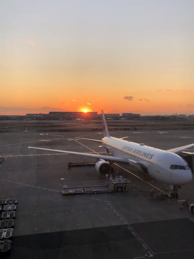 夕陽が綺麗