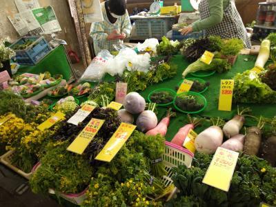 新鮮で珍しい鎌倉野菜が購入できる