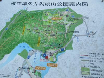 県立津久井湖城山公園 (花の苑地)