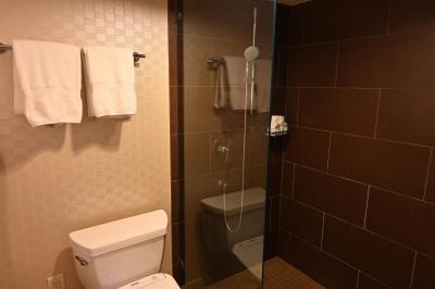 バスタブはなくシャワーのみ