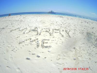 白い砂浜とアクアマリンの宝石のような薄い水色の海