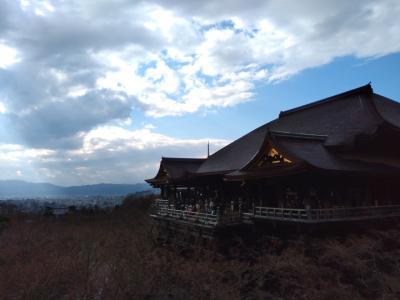 京都来たらやはりここへ