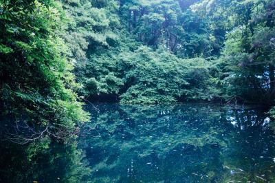 神秘的な青い池