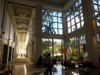 この巨大な吹抜けガラス張りの廊下&ロビー