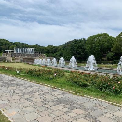 都市部から近い大きな整備された公園