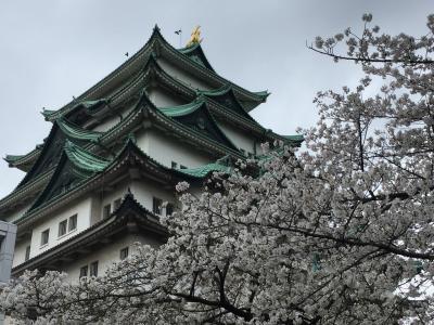 桜咲く名古屋城