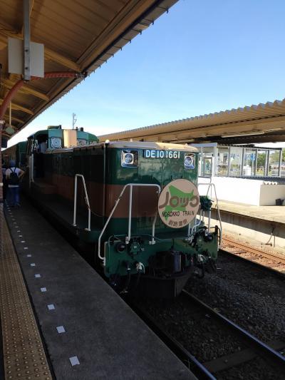車窓から湿原や野生動物を観察できる稀有な列車