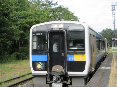 ハイブリッドが売りの列車です