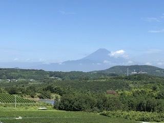 富士山望むワイナリー