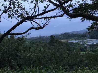 ミカン畑の中にある手作りのキャンプ場