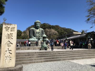 鎌倉のシンボルの一つ