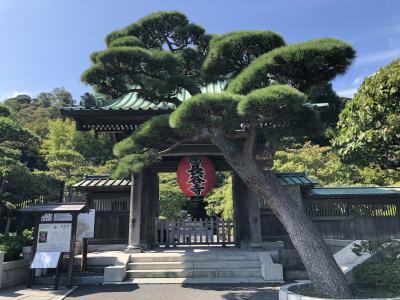 鎌倉にある花の寺