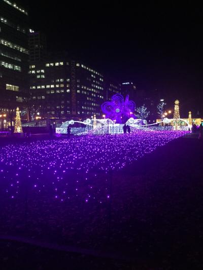 静かに開催。札幌イルミネーション