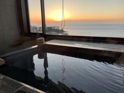 白浜を眺めながら入れるお風呂付きのお部屋がとても良かった