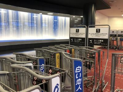 羽田空港の検疫 出国前にやっておいた方がいいこと・入国時に知っておいた方が良いこと