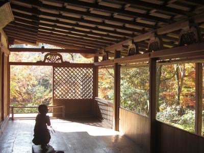石水院、西面から見る紅葉が素晴らしい高山寺