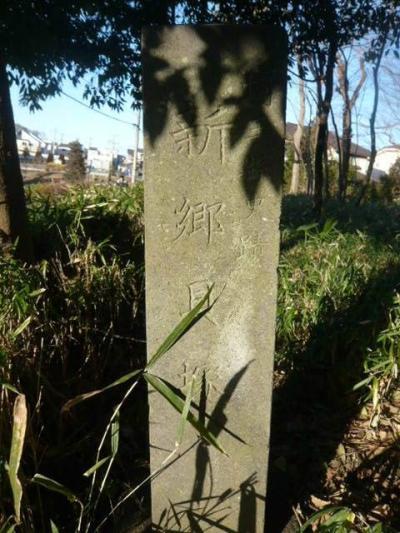 新郷貝塚は、川口の若宮公園内にある埼玉県内最大の貝塚であり、縄文時代の生活の遺跡です。