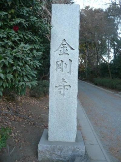金剛寺は、中田安行入道が開いたお寺で、金剛経のお教えを敷衍するためお寺の名称としました。