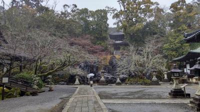 滋賀県最古の建物ありました