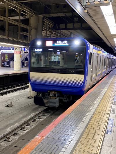新しい横須賀・総武快速線のE235系のグリーン車は快適です。