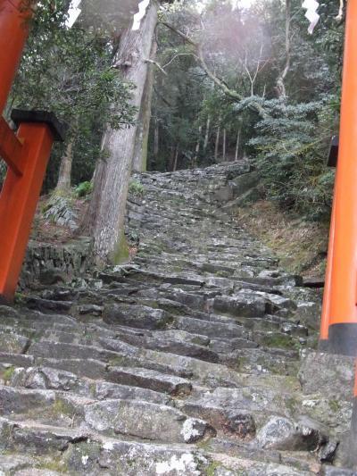階段が厳しそうで諦めた