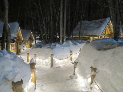 雪の夜のライトアップもすてきです。
