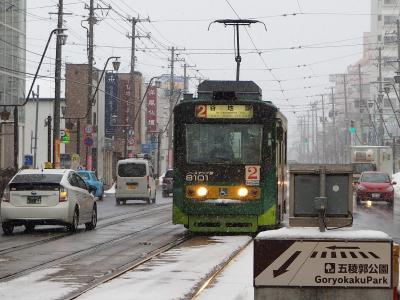 函館市内の主要な観光地巡りに便利