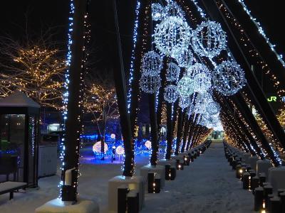 冬の夜の散歩が楽しみになります