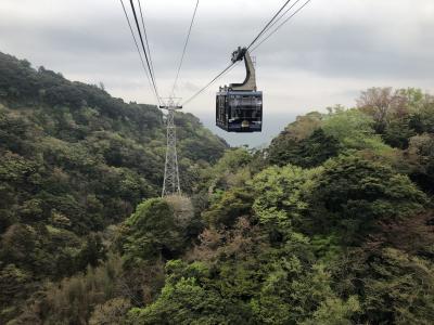 日本平と久能山を結ぶ5分の空の旅