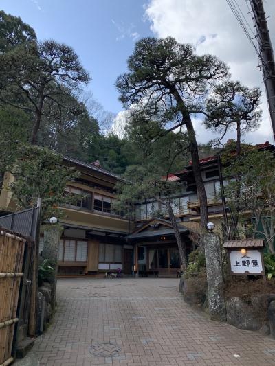 創業三百余年、国登録有形文化財にもなっている温泉がよい老舗旅館
